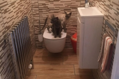 kitchen_bathroomers_024