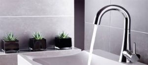 Abode Designs Chao Tap